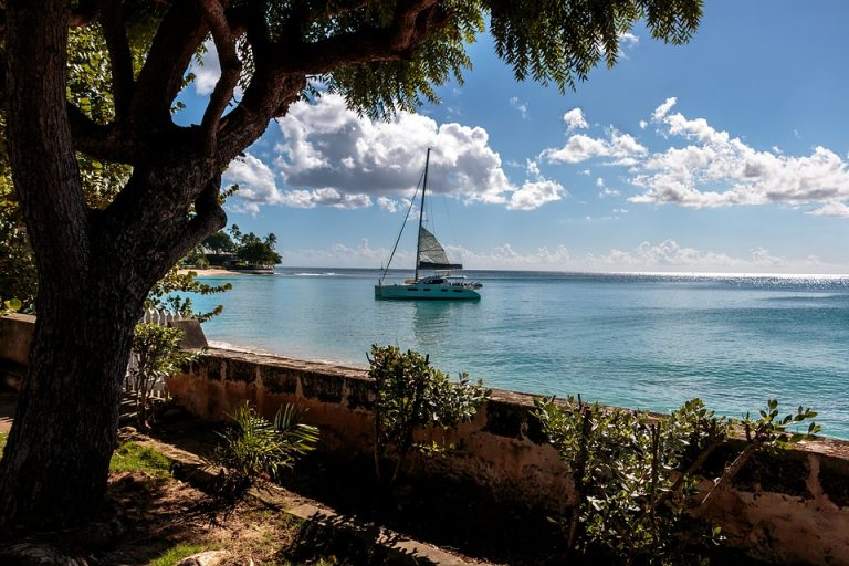 All Things to Know Before Traveling to Barbados